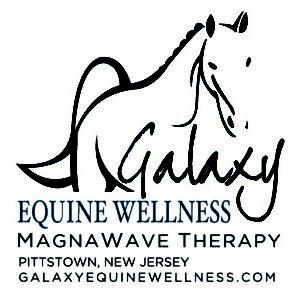 Galaxy Equine Wellness