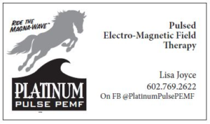 Platinum Pulse PEMF