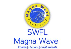 SWFL Magna Wave