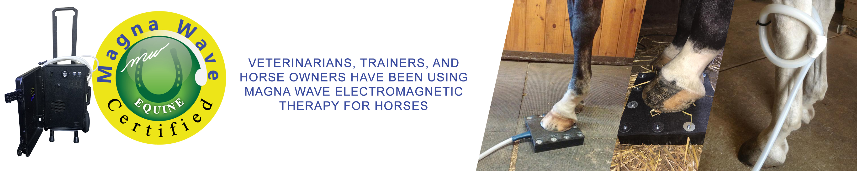 Magna Wave Certified Veterinarians, trainers, and horse owners have been using Magna Wave electromagnetic therapy for horses.