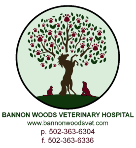 Bannon Woods Veterinary Hospital