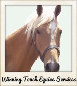 Winning Touch Equine Services