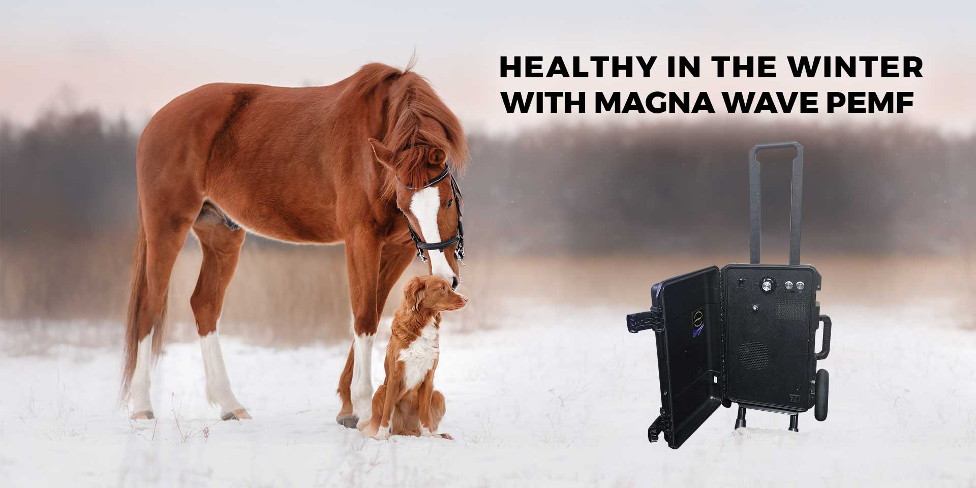 Healthy in the winter with Magna Wave PEMF