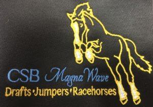 CSB Magna Wave