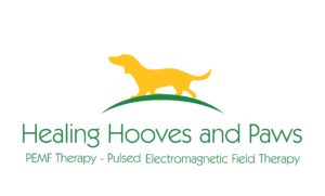 Healing Hooves and Paws