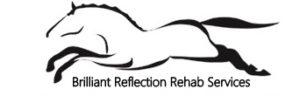 Brilliant Reflection Rehab Services