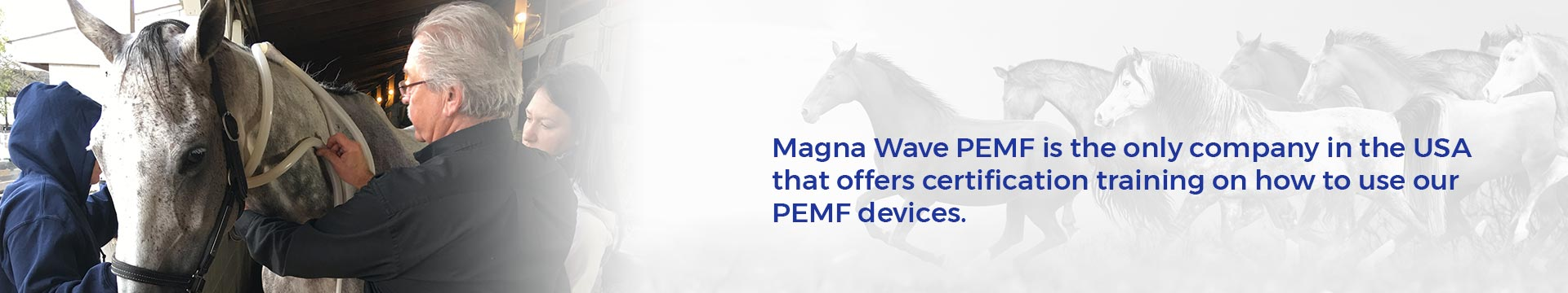 Magna Wave PEMF is the only company in the USA that offers certification training on how to use our PEMF devices.