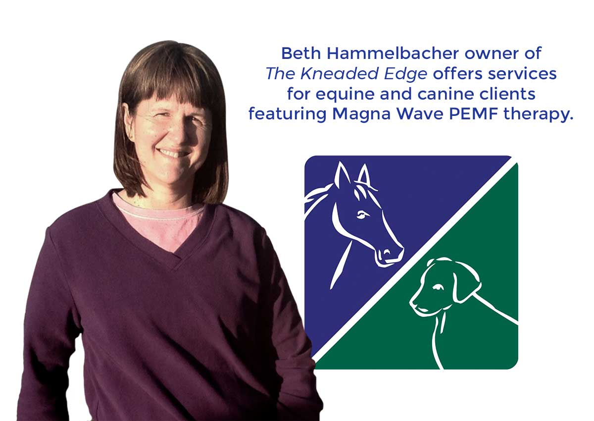 Beth Hammelbacher owner of the Kneaded Edge offers services for equine and canine clients featuring Magna Wave PEMF therapy.