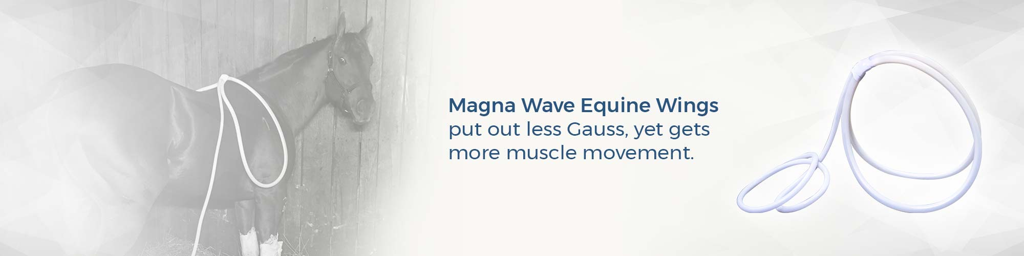 Magna Wave Equine Wings put out less Gauss, yet gets more muscle movement.