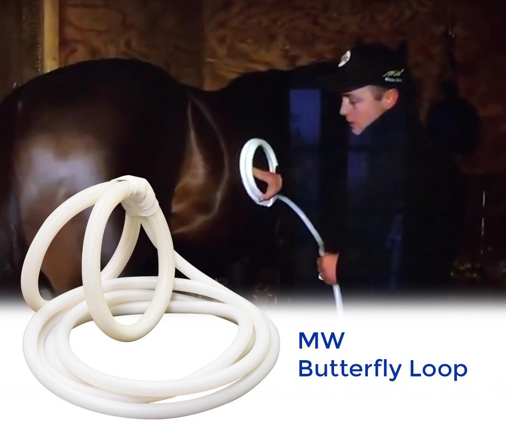 MW Butterfly Loop