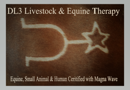 DL3 Livestock & Equine Therapy