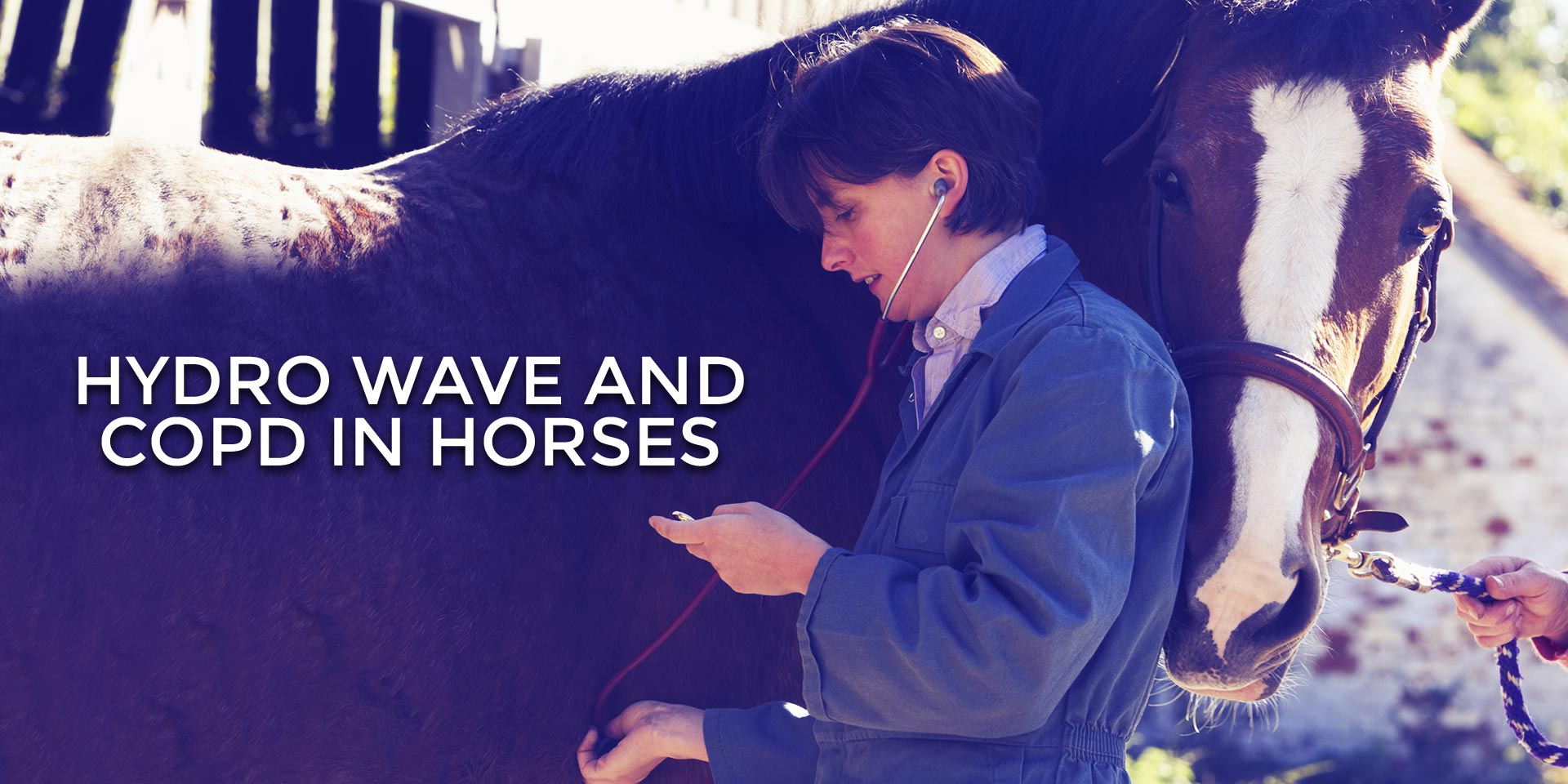 Hydro Wave and COPD in Horses