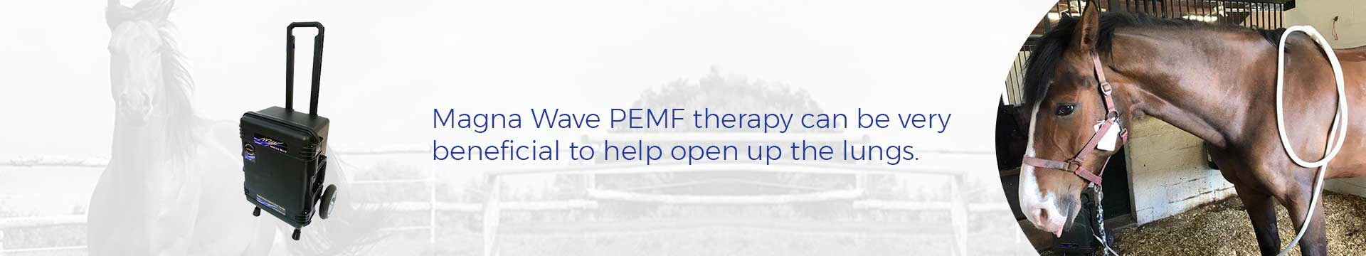 Magna Wave PEMF therapy can be very beneficial to help open up the lungs.