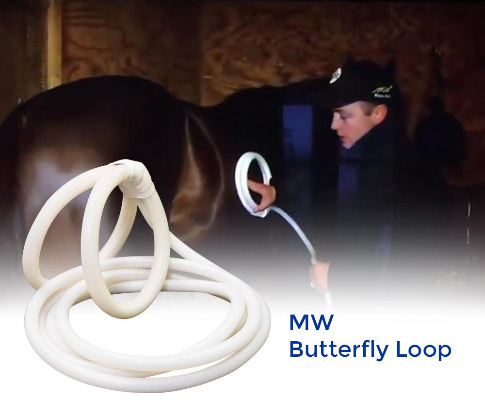 Magna Wave PEMF Butterfly Loop