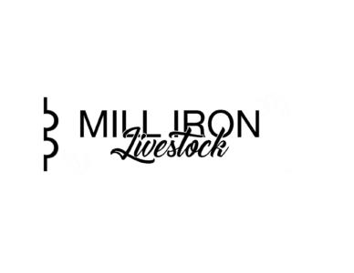 Mill Iron Livestock