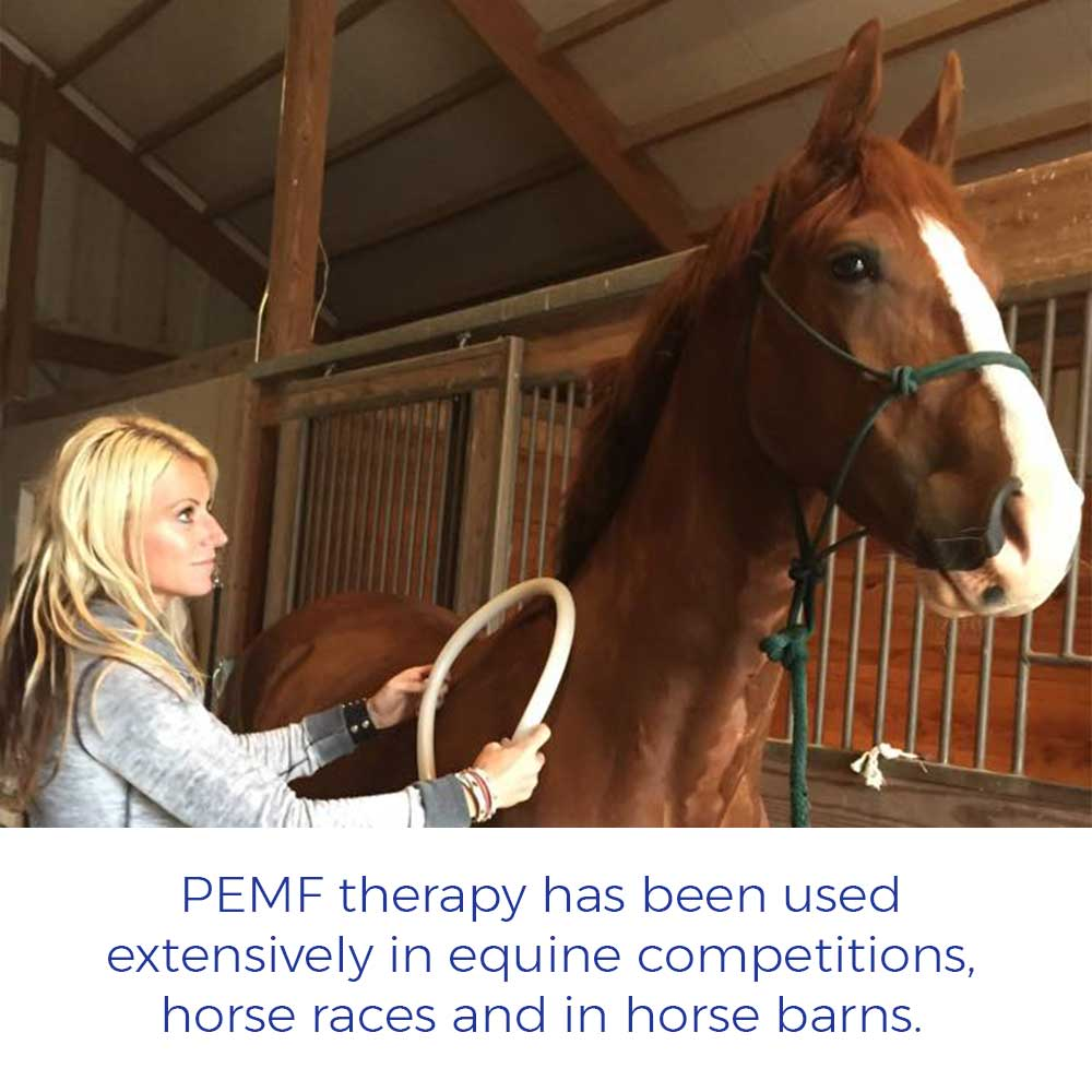 PEMF therapy has been used extensively in equine competitions, horse races and in horse barns.