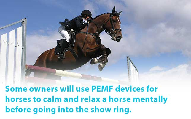 Some owners will use PEMF devices for horse to calm and relax a horse mentally before going into the show ring