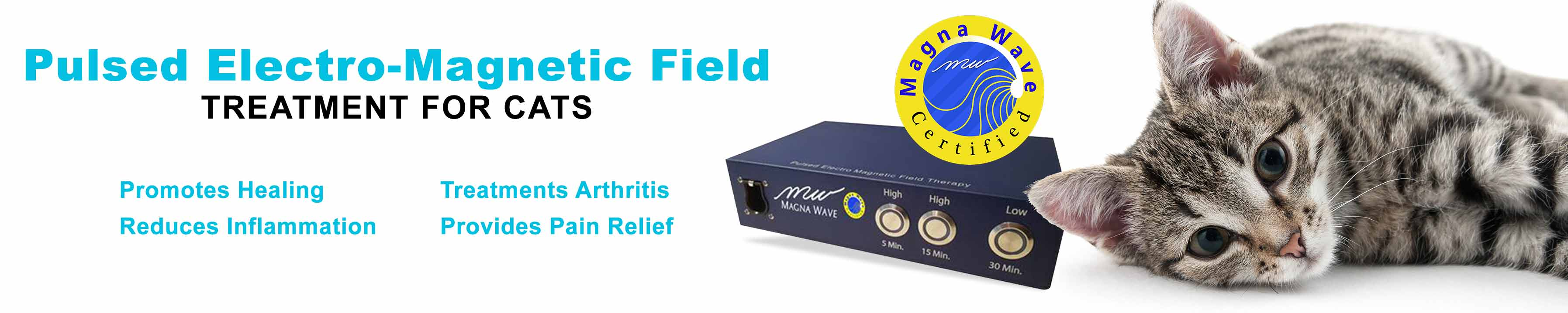 Pulsed Electro-Magnetic Field Treatment for Cats Promotes Healing, Reduces Inflammation, Treatments Arthritis, Provides Pain Relief