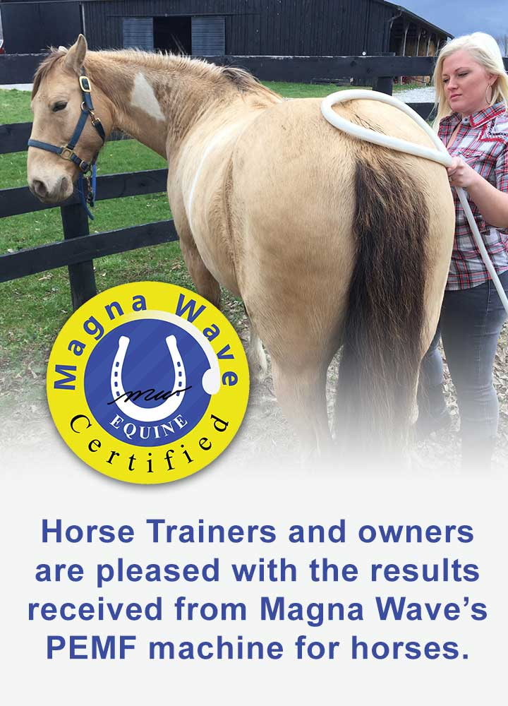 Horse trainers and owners are pleased with the results received from Magna Wave's PEMF Machine for Horses