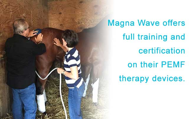 Magna Wave PEMF - Therapy Devices PEMF Training