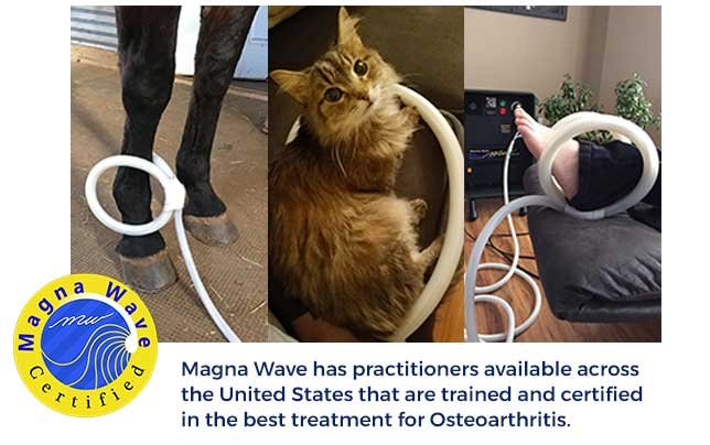 Magna Wave has practitioners available across the United States that are trained and certified in the best treatment for osteoarthritis.