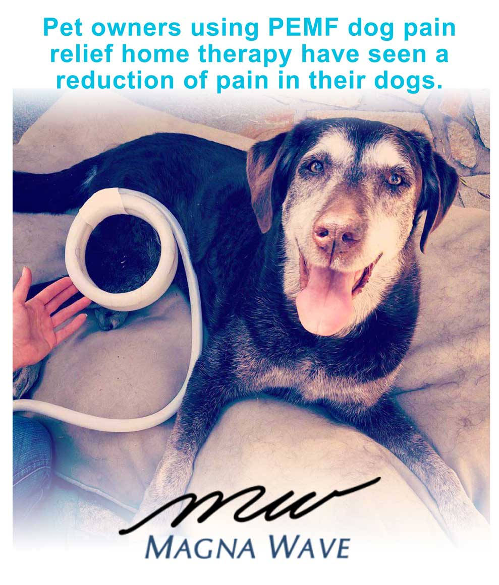 Pet owners using PEMF dog pain relief home therapy have seen a reduction of pain in their dogs.