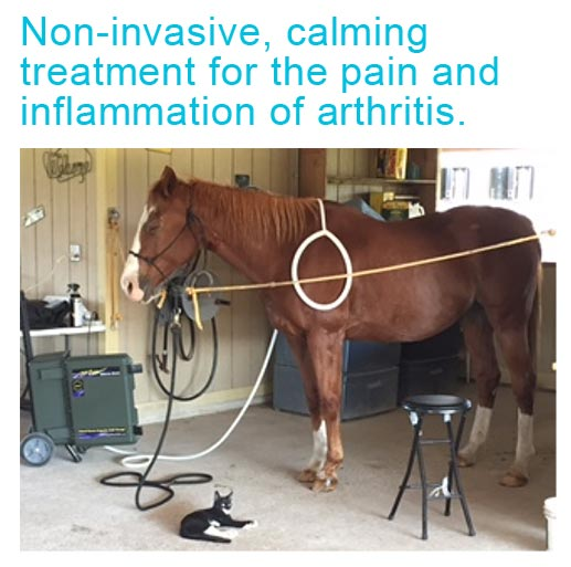 Non-invasive and calming treatment for the pain and inflammation of arthritis.