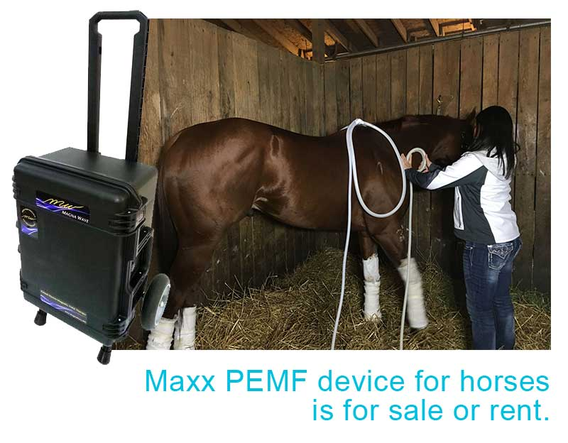 Maxx PEMF device for horses is for sale or rent