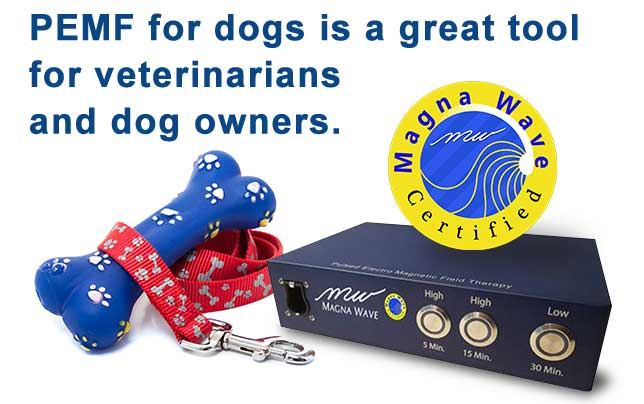 PEMF for dogs is a great tool for veterinarians and dog owners