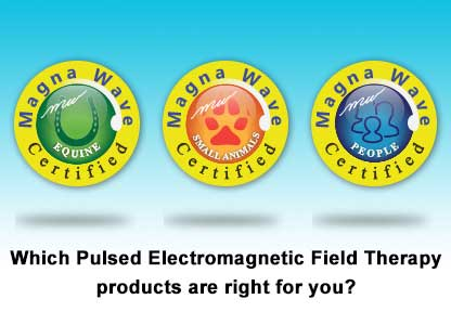 Which Pulsed Elctromagnetic Field Therapy products are right for you?
