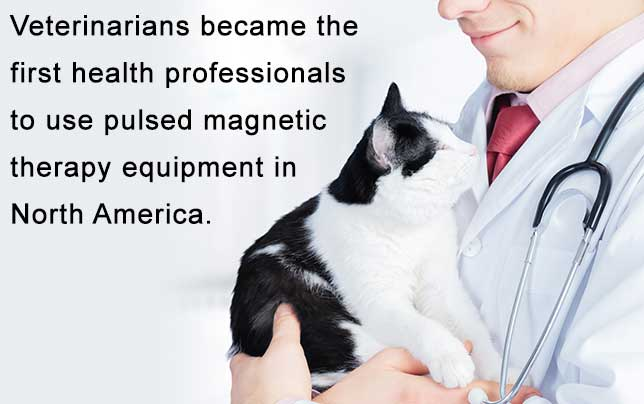 Magna Wave - Pulsed Magnetic Therapy Equipment Veterinarians North America