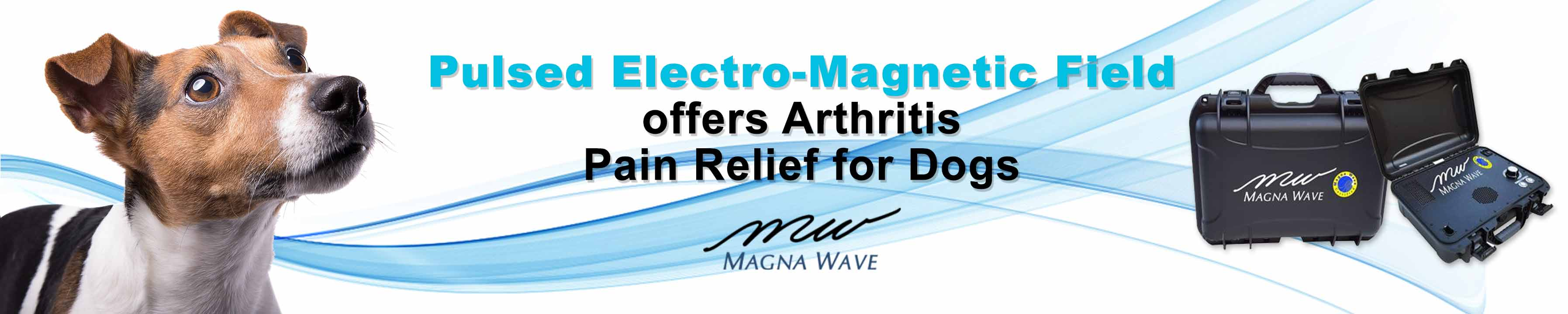 Pulsed Electro-Magnetic Field offers arthritis pain relief for dogs