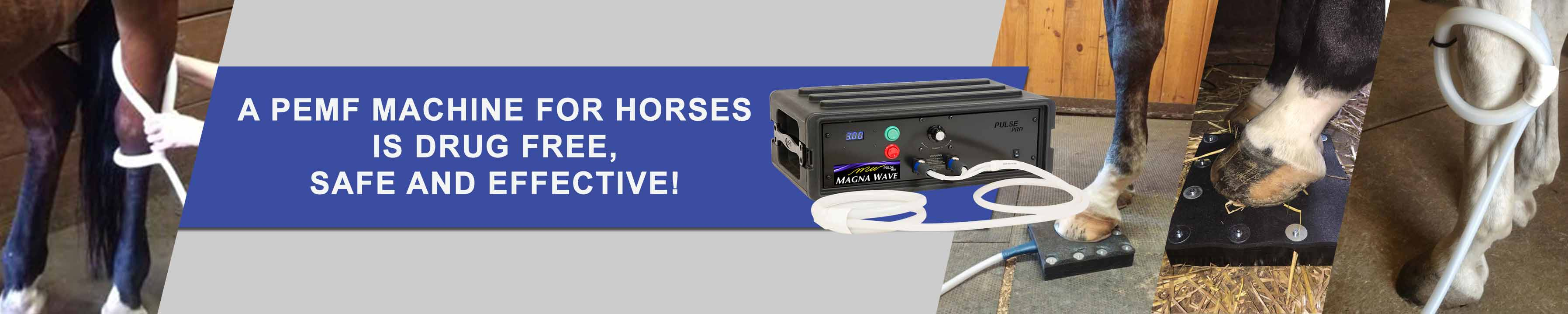 A Magna Wave PEMF Machine for Horses is drug free, safe and effective!