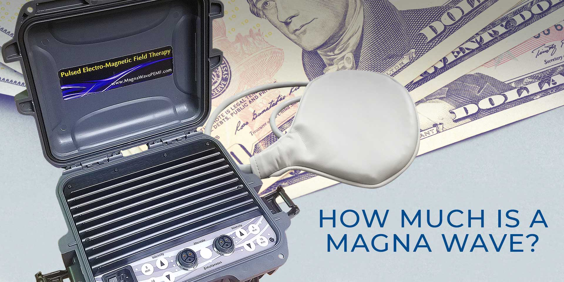 How Much is a Magna Wave?