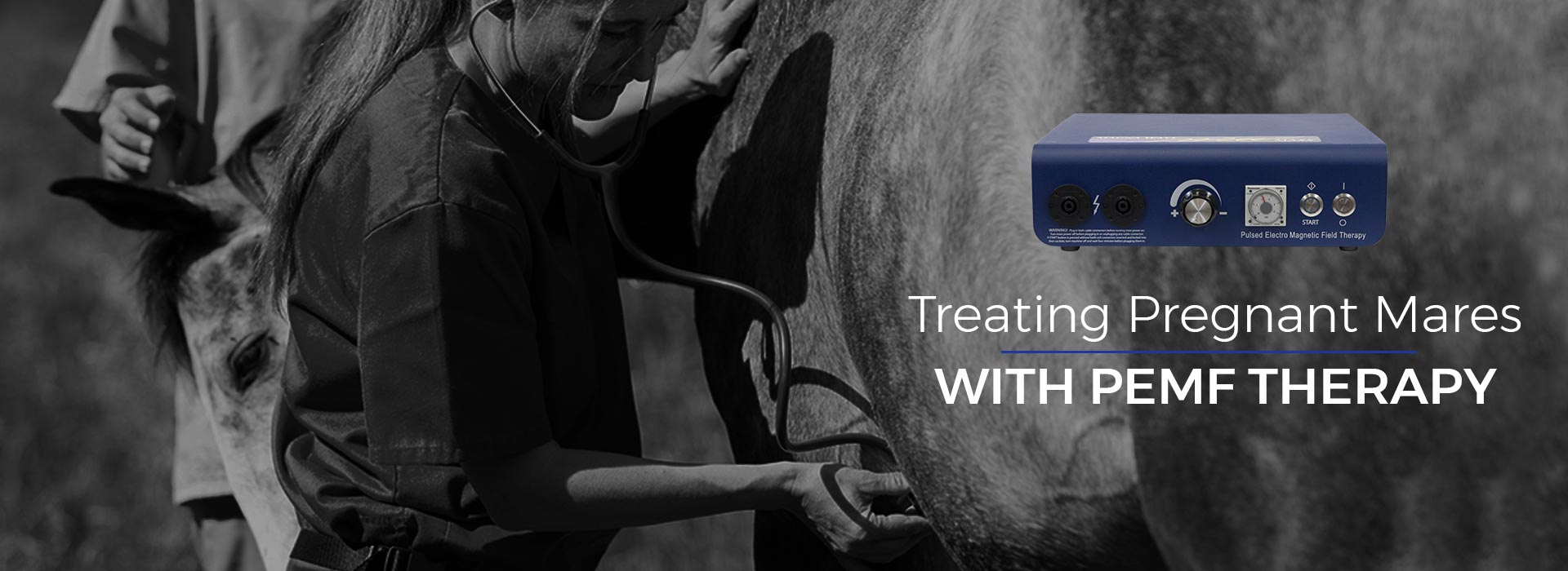 Treating Pregnant Mares with PEMF Therapy