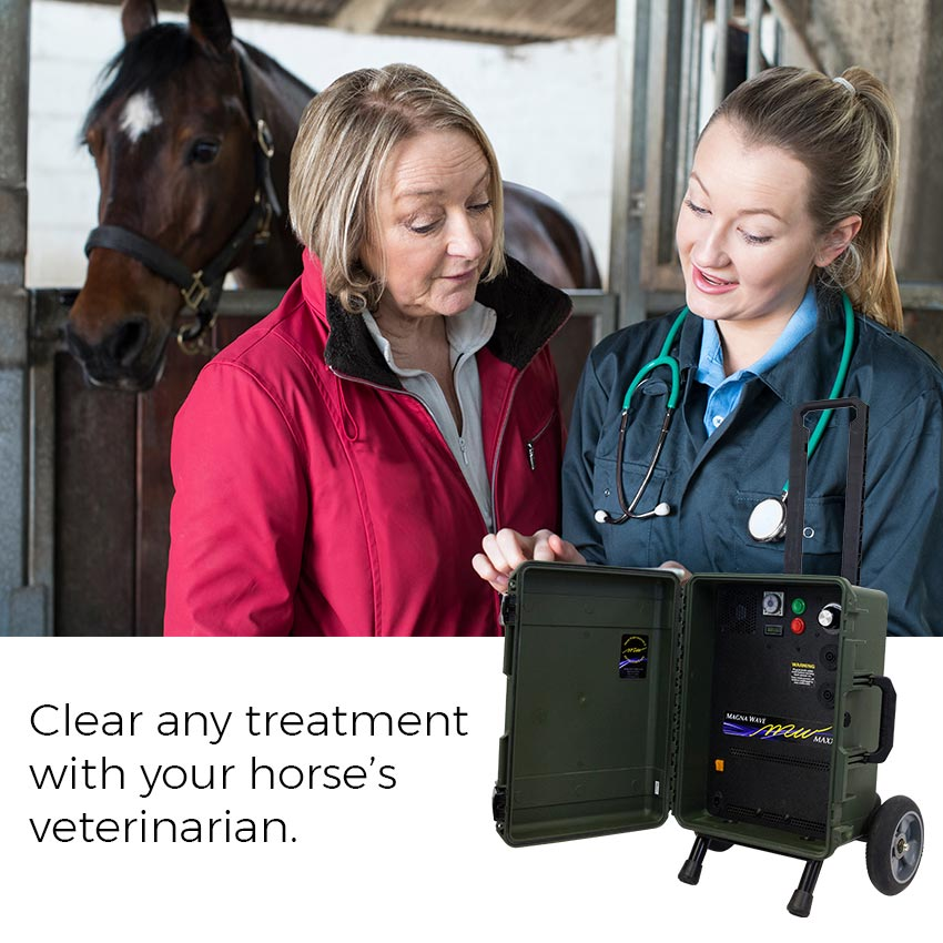 Clear any treatment with your horse's veterinarian