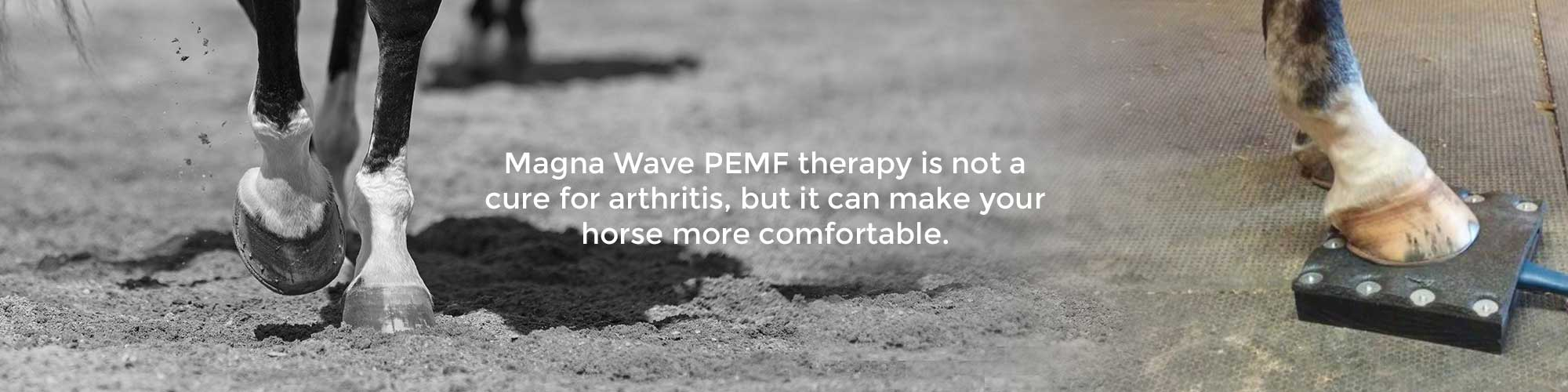 Magna Wave PEMF therapy is not a cure for arthritis, but it can make your horse more comfortable.