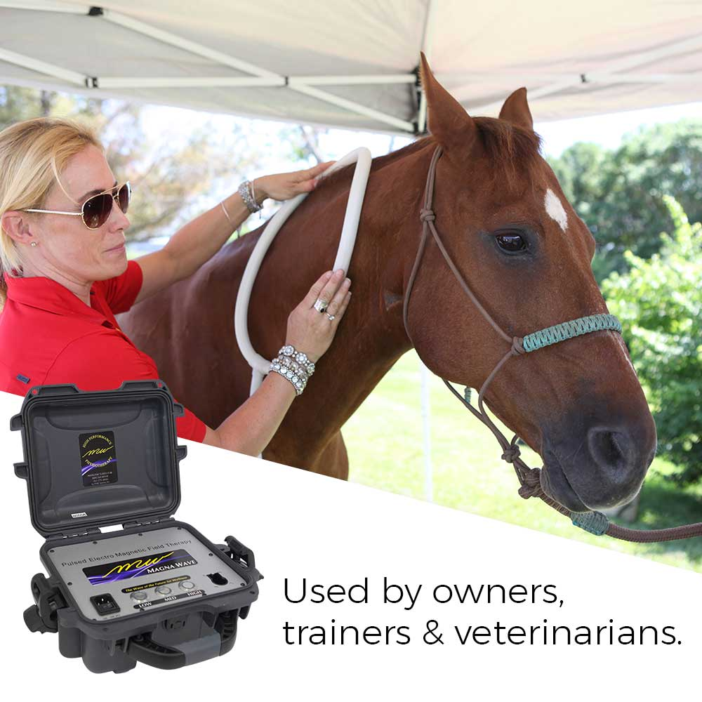 Magna Wave PEMF Used by owners trainers & veterinarians