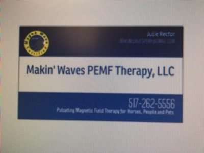 Makin' Waves PEMF Therapy