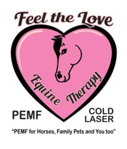 Feel the Love Equine Therapy