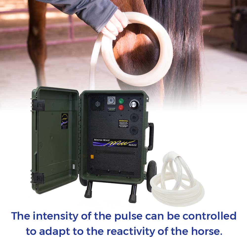 The intensity of the pulse can be controlled to adapt to the reactivity of the horse.
