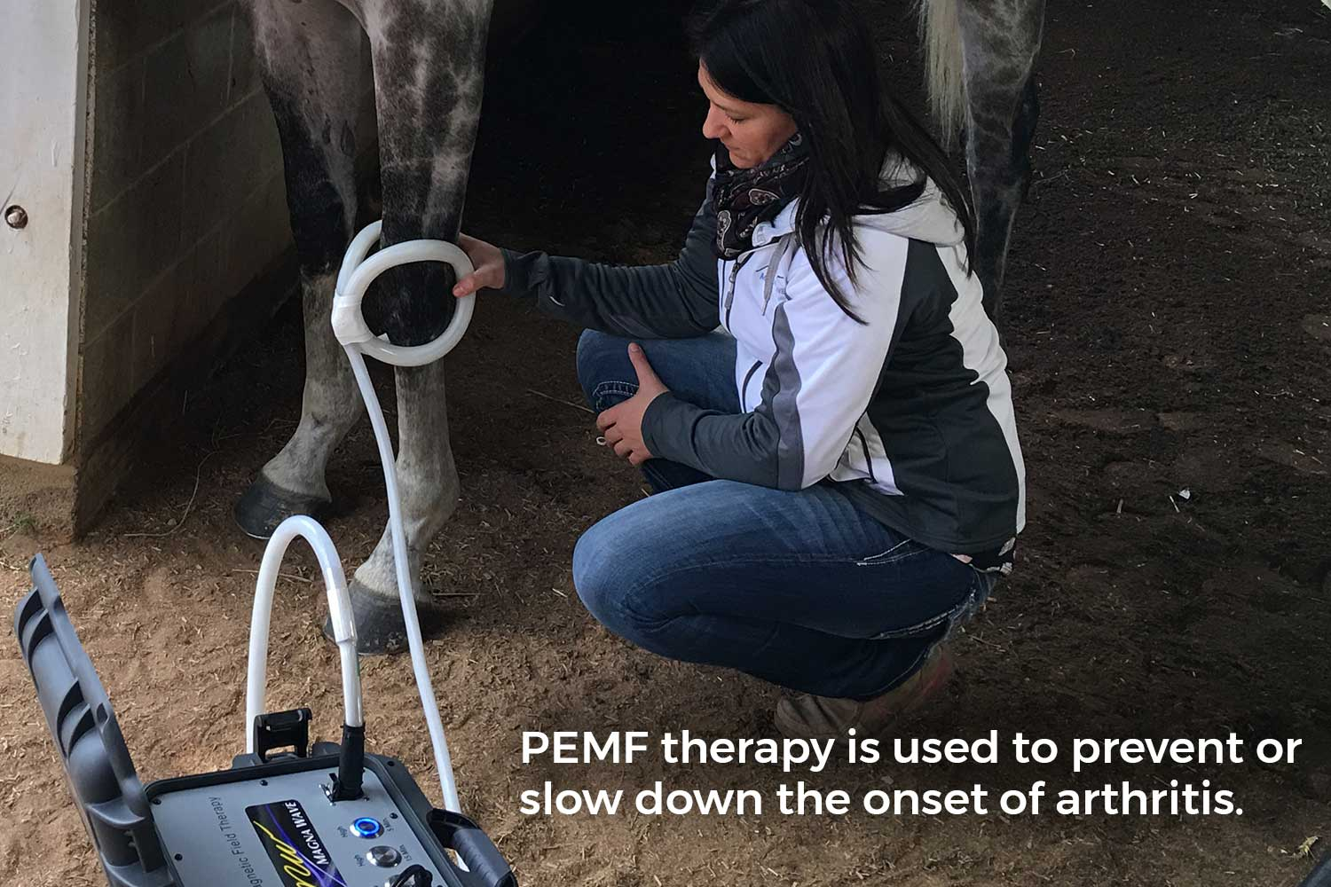 PEMF therapy is used to prevent or slow down the onset of arthritis.