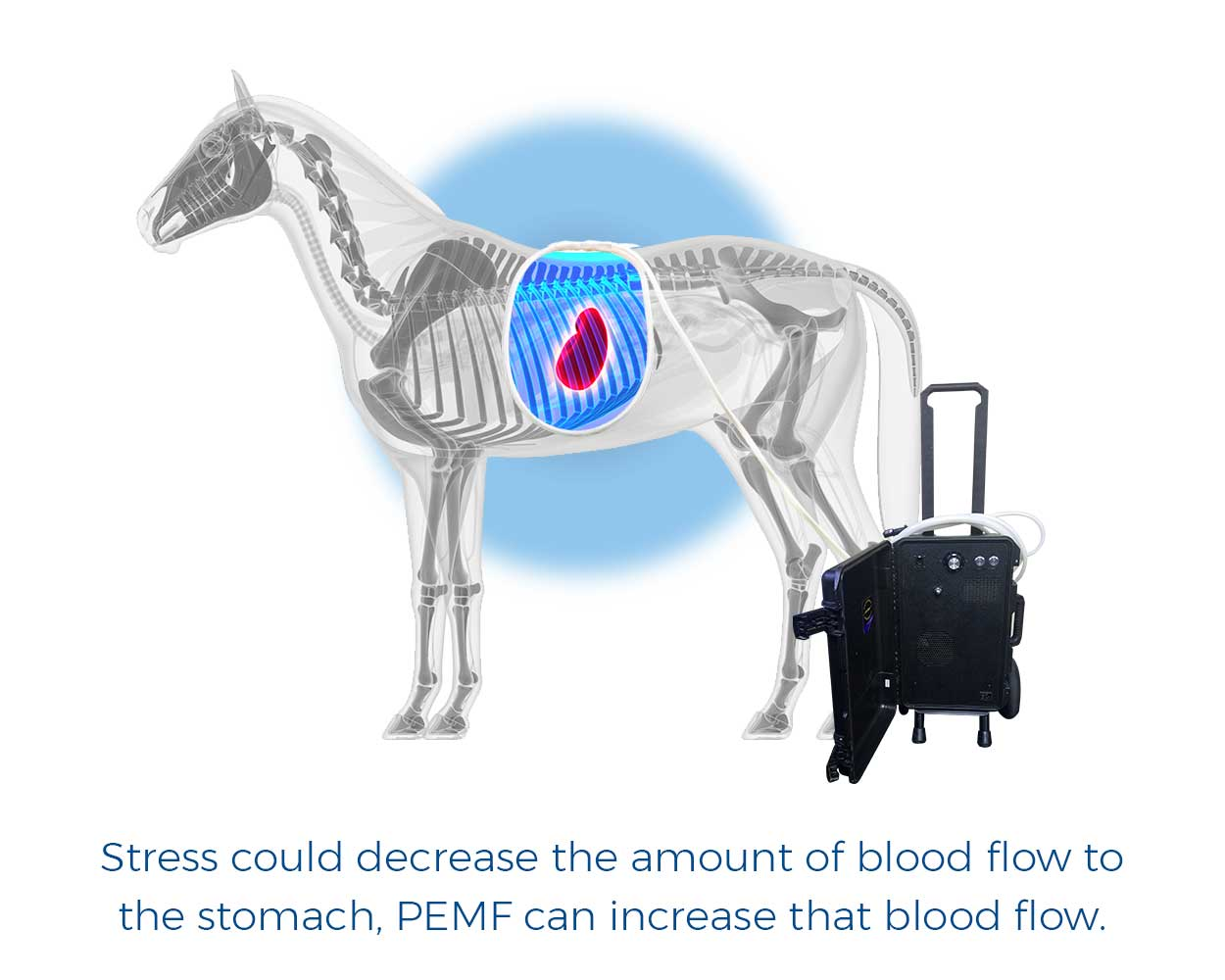 Stress could decrease the amount of blood flow to the stomach, PEMF can increase that blood flow