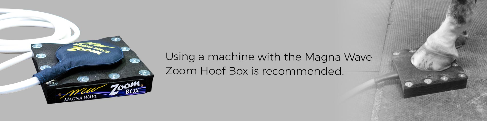 Using a machine with the Magna Wave Zoom Hoof Box is recommended