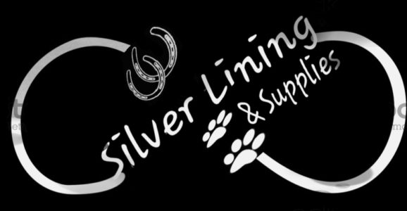 Infinity Silver Lining