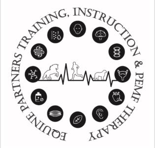 Equine Partners Training, Instruction & PEMF