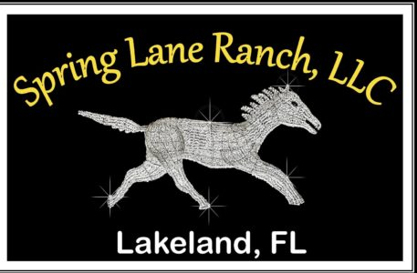 Spring Lane Ranch, LLC