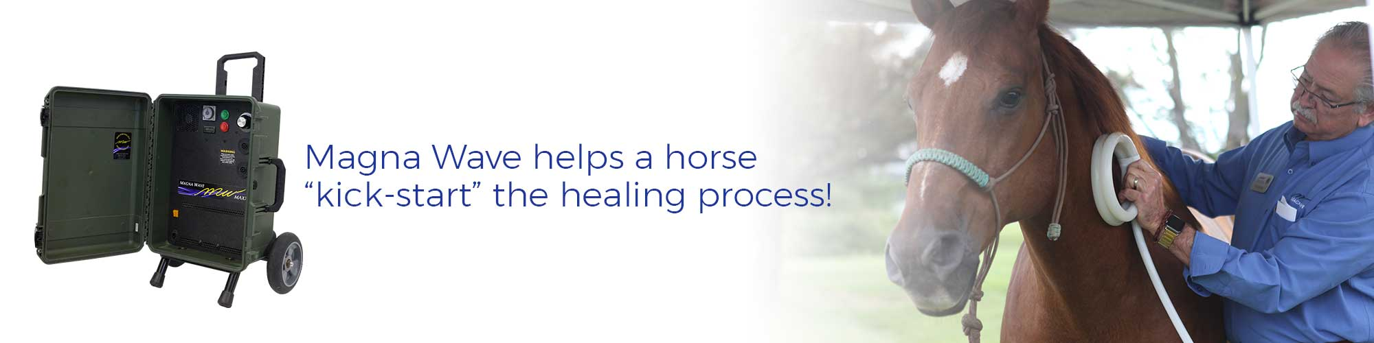 "Magna Wave helps a horse ""kick-start"" the healing process!"