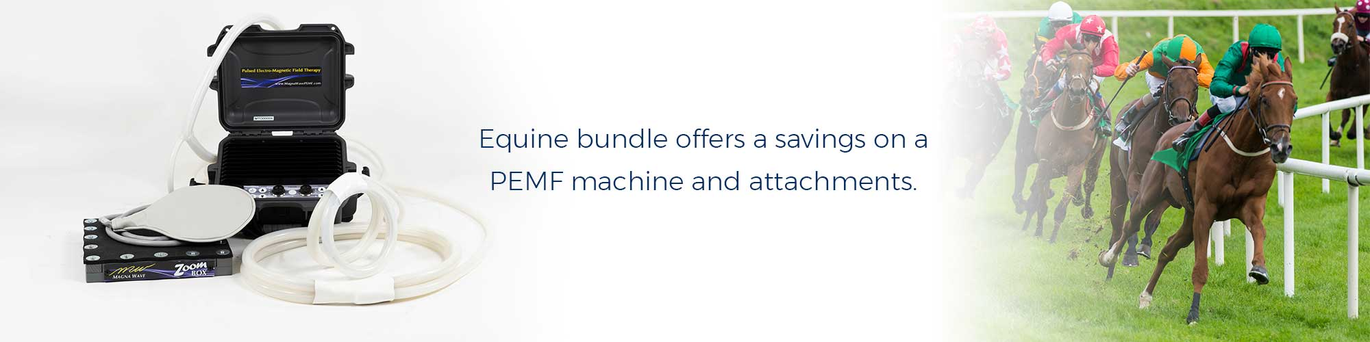 Equine bundle offers a savings on a PEMF machine and attachments