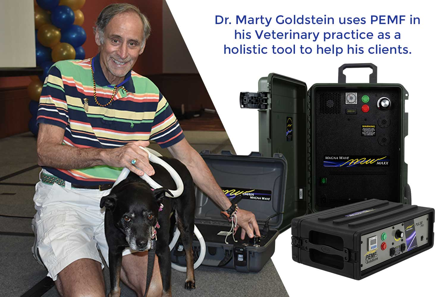 Dr. Marty Goldstein uses PEMF in his Veterinary practice as a holistic tool to help his clients